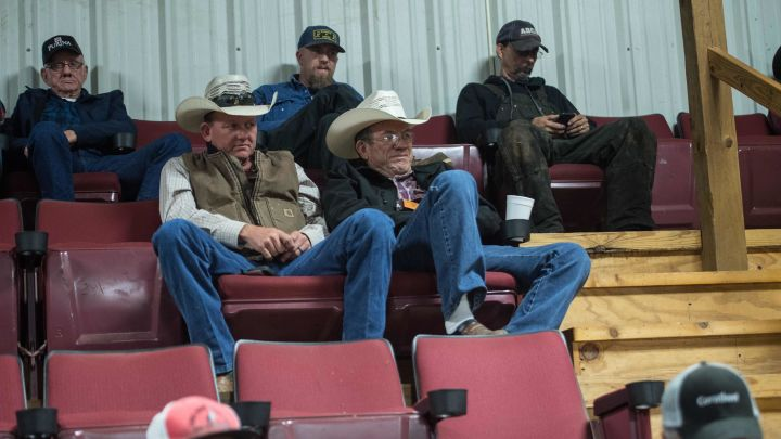 People attend a livestock auction at Pruitt's Mid-State stockyards in Damascus, Arkansas, on November 6, 2017.